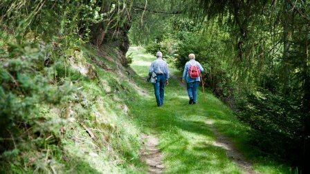 Le Chemin de Compostelle – Camino français